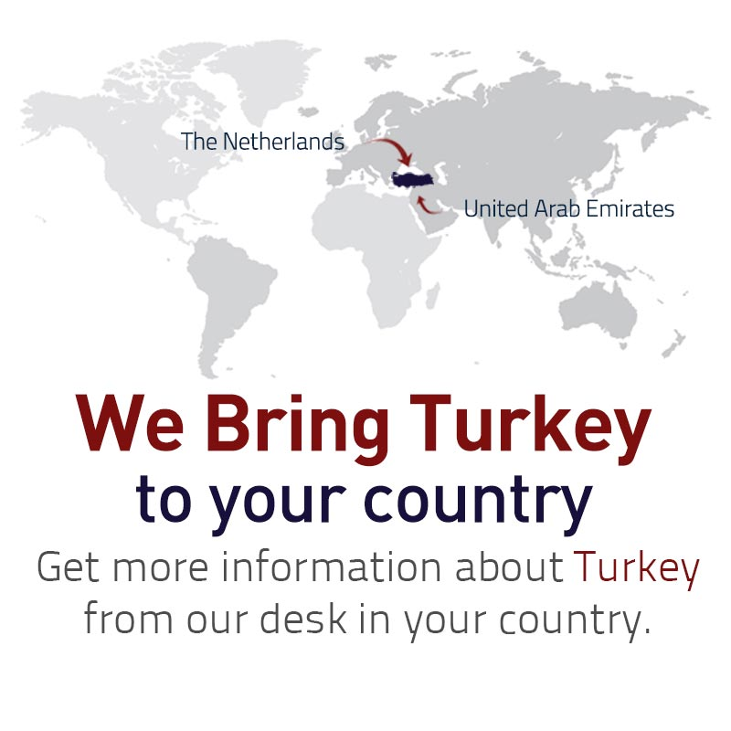 We-Bring-Turkey-to-you